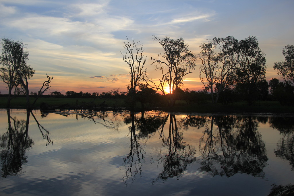 Kakadu Evening by landownunder