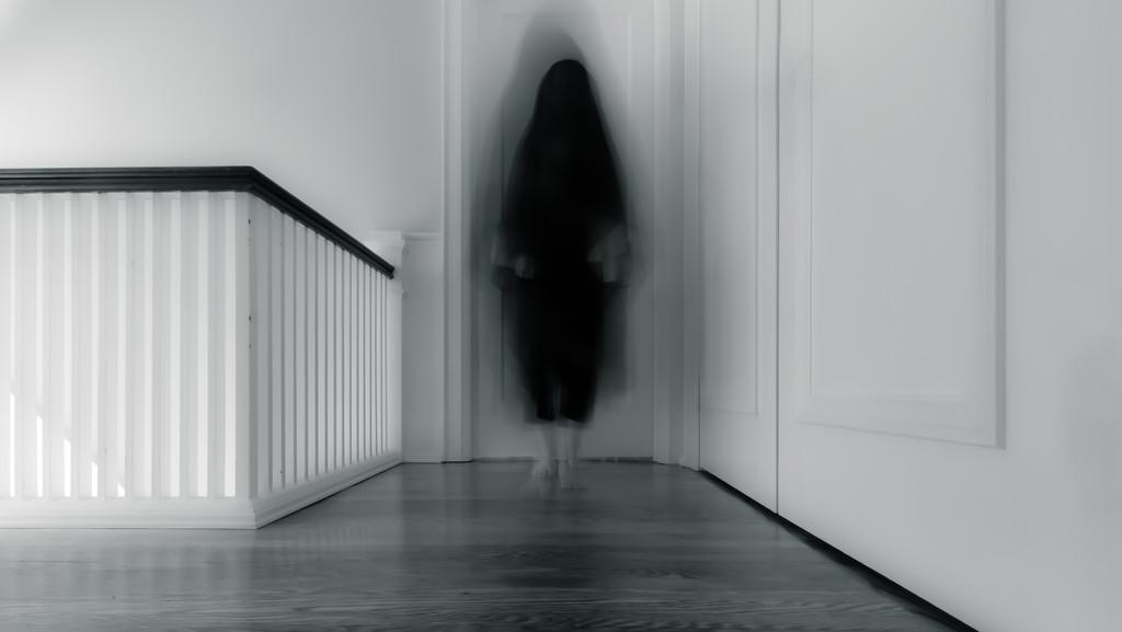 she walks in shadows... by northy