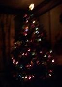 29th Dec 2010 - Good-bye Christmas