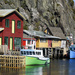 The Quidi Vidi Neighbourhood by Weezilou