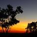 Sunset at Undara by terryliv