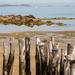 Beach, St Malo by dorsethelen