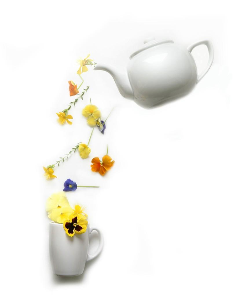 A Cup of Prit-Tea by jesperani