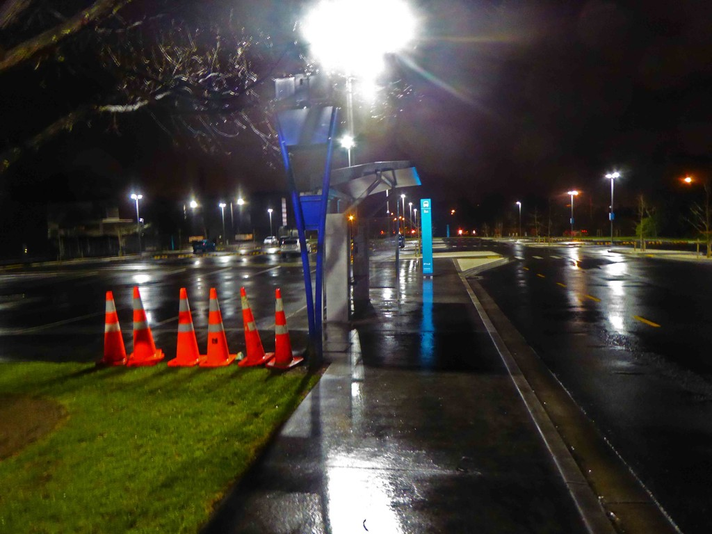 Waiting for the bus in the rain before dawn by maureenpp