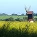 In the Fields: Stevington Mill