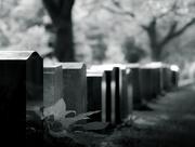 16th Jun 2017 - cemetery light