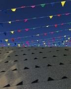 24th Jun 2017 - 6.24 Bunting and their shadows