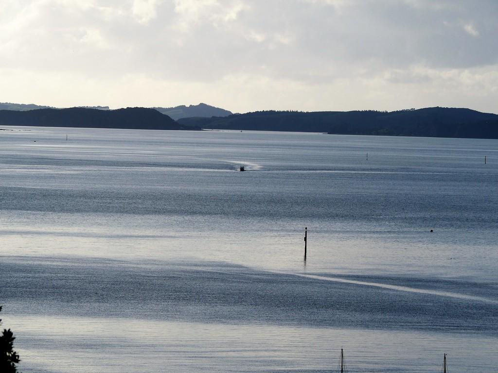 Taken at Opua Bay of Islands by Dawn