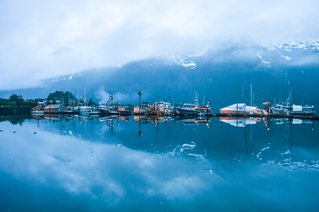 Pelican Harbor by 365karly1