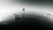 26th Jun 2017 - on stranger tides...