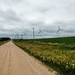 Gravel Road and Wind Turbines