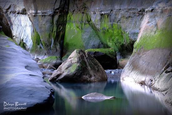 Rock pool by dkbarnett