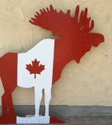 29th Jun 2017 - Canada 🇨🇦 day decorations