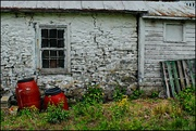 29th Jun 2017 - By the Side of the Pump House (artsy)