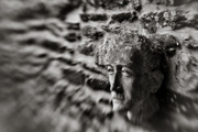 29th Jun 2017 - Wall Face - Lensbaby Style...