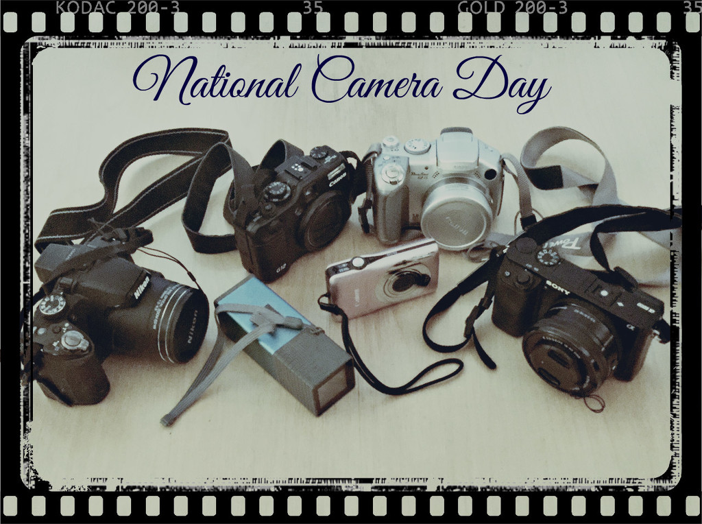 National Camera Day by allie912