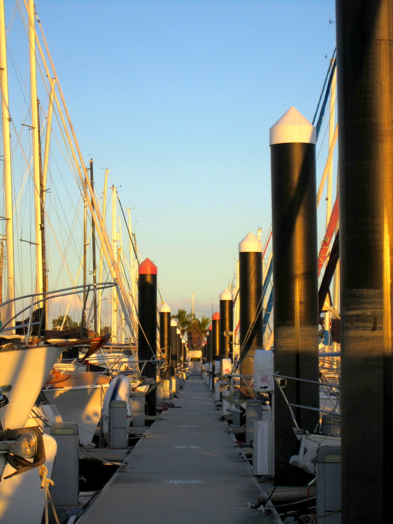 Million dollar Yacht row.  Beautiful large yachts either side of these pylons by 777margo