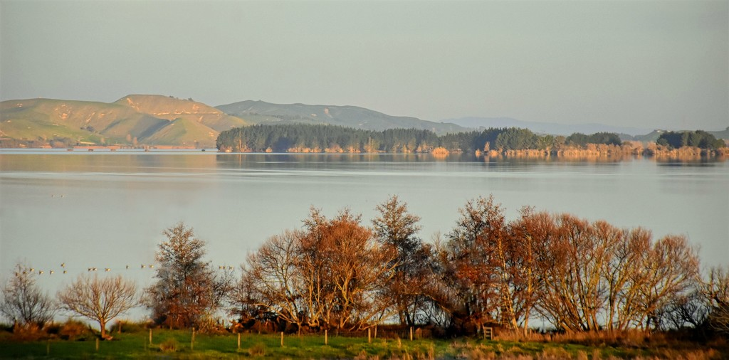 Lake Waikare by nickspicsnz