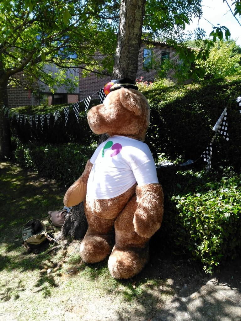 Big Bear. by jmdspeedy