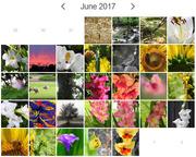 2nd Jul 2017 - 30 Days Wild Complete