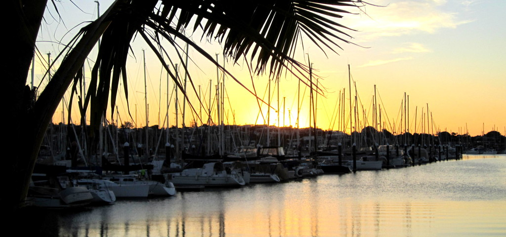 At the setting of the sun Manly Marina by 777margo