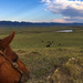 Wyoming Cattle Country Skyline by jetr