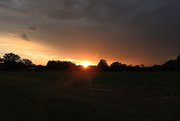 6th Jul 2017 - Beauty before the storm