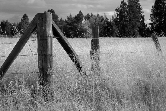 Fenced by lsquared