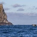 Whale at Tasman Island by jyokota