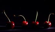 7th Jul 2017 - Cherry, Cherry, Cherry, Cherry