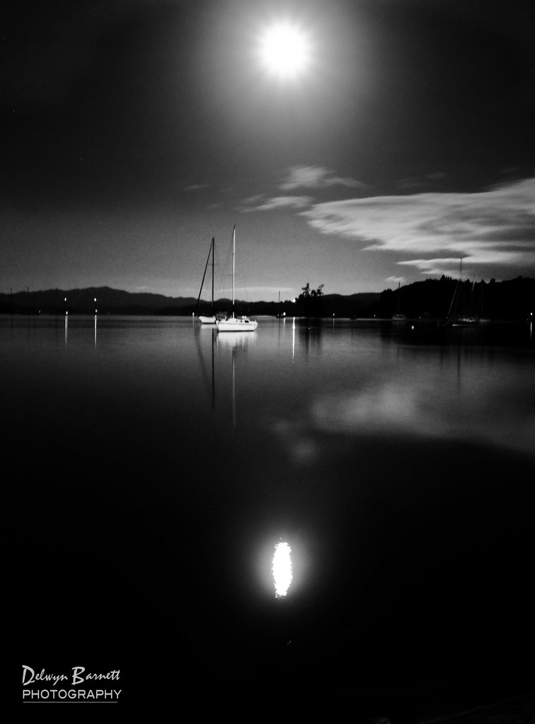 Moonlit harbour by dkbarnett