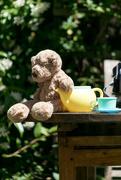 10th Jul 2017 - Teddy Bear's picnic