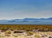 11th Jul 2017 - The Desert