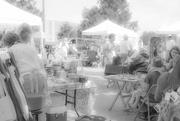 15th Jul 2017 - Farmer's Market