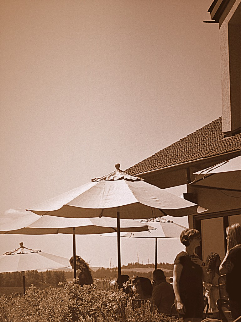 vineyard patio by granagringa