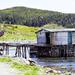 Rustic Newfoundland