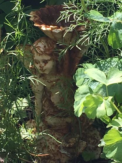 Fairy in the garden by 365projectmaxine