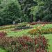 Nottingham Arboretum Gardens