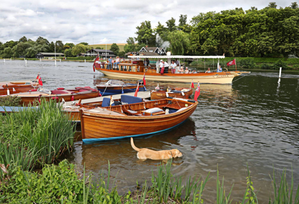 A pleasant scene at the Henley Vintage Boat Festival by netkonnexion
