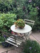 18th Jul 2017 - Shady corner of the garden