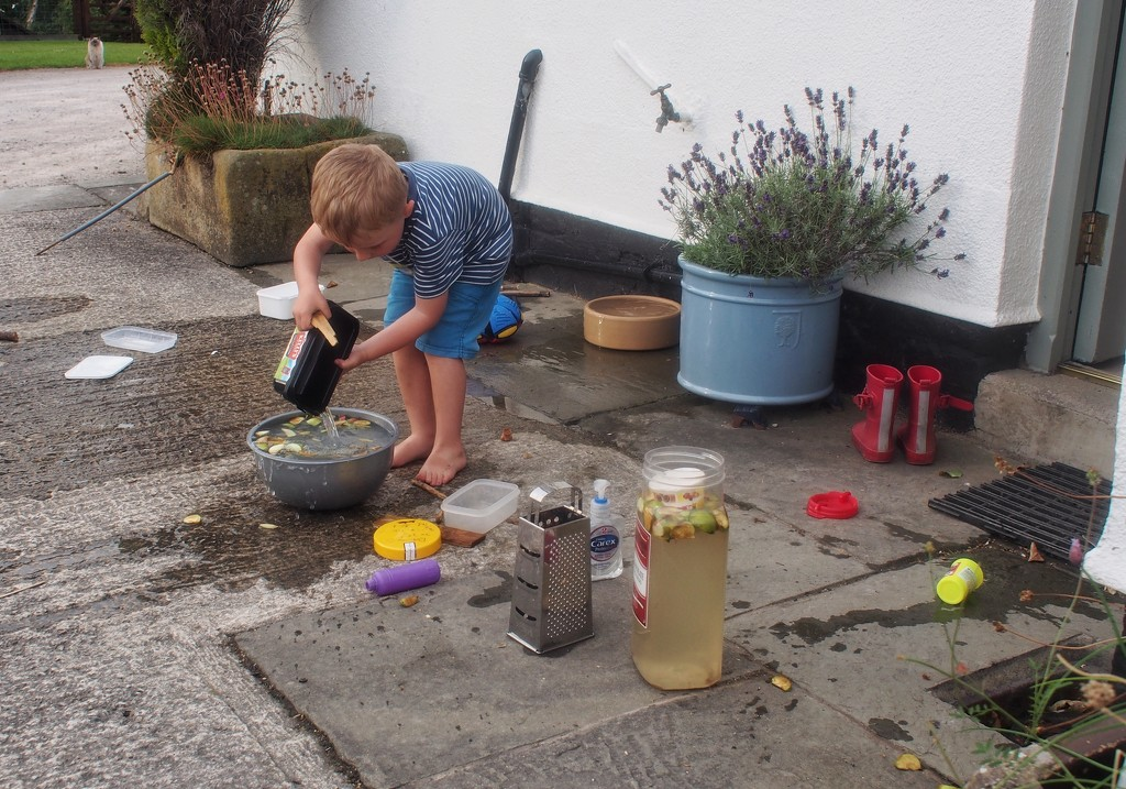 A boy, some water, old apples & sundry jars that's all that's needed!  by happypat
