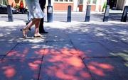 17th Jul 2017 - Colour on the pavement