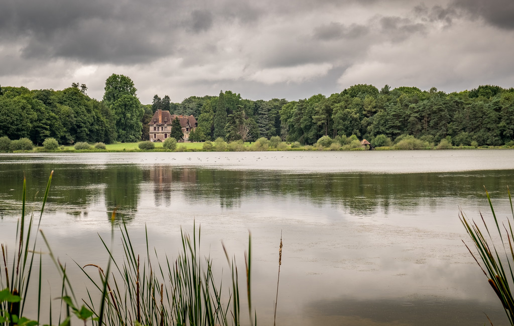 Château on a drear, drizzly afternoon by vignouse