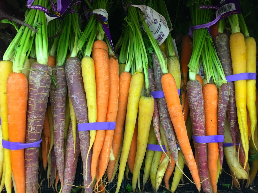 Rainbow Carrots by 365projectorgkaty2