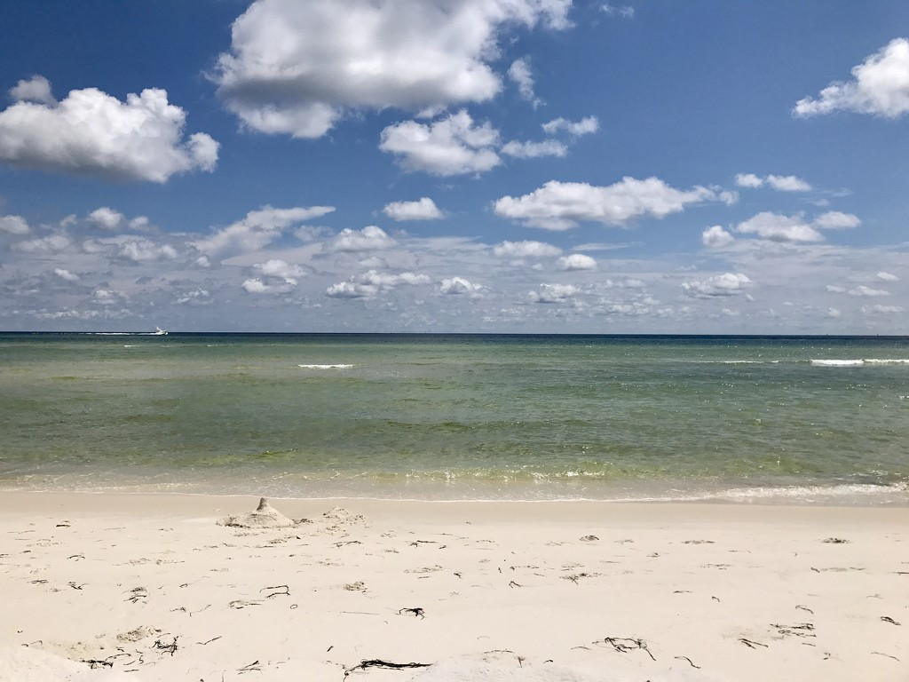 Beach Day by tskipper