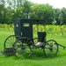 Mennonites buggy