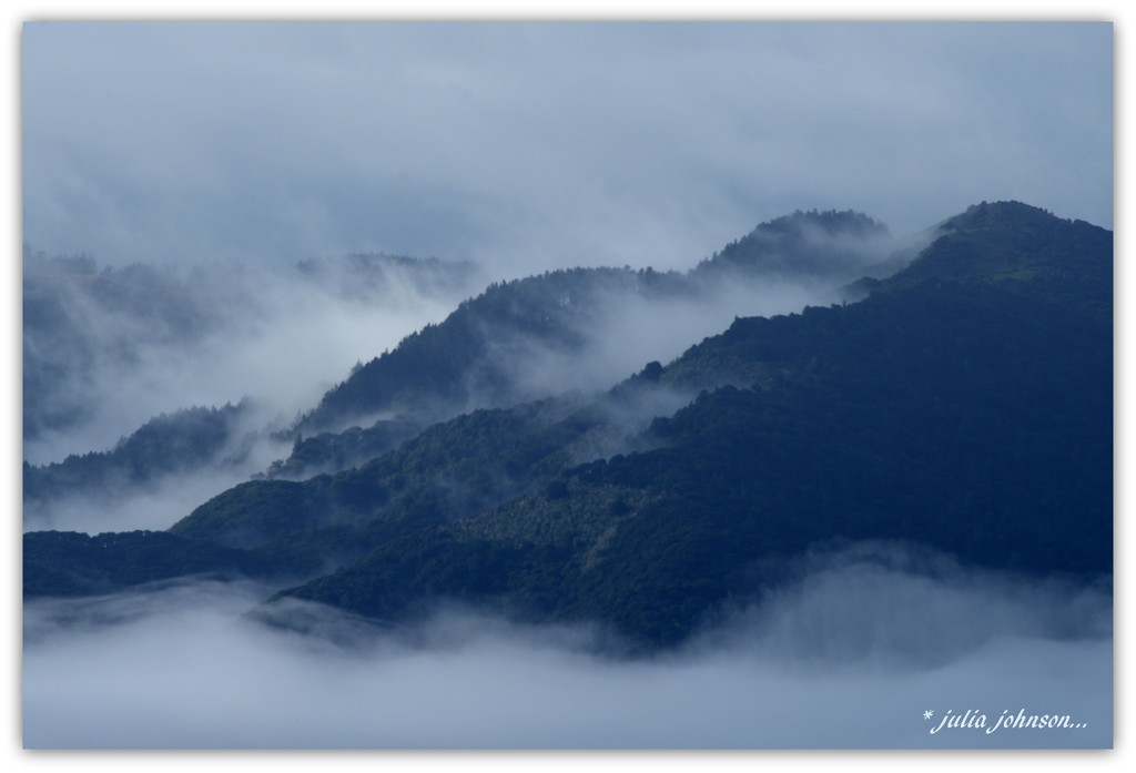 Fog on The River Hills... by julzmaioro