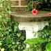 One Little Corner Of the Garden