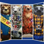 25th Jul 2017 - The Big Sleuth