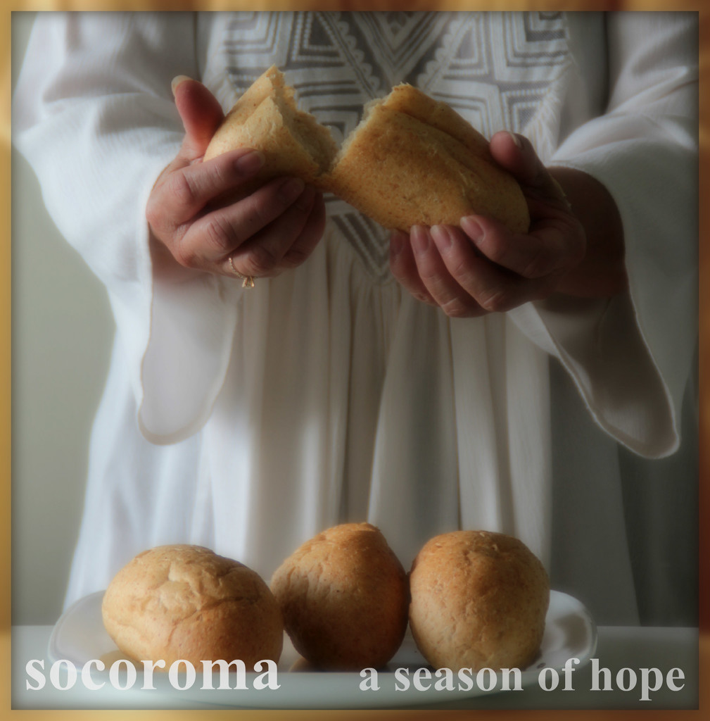 a season of hope - VOTE FOR #1 by summerfield